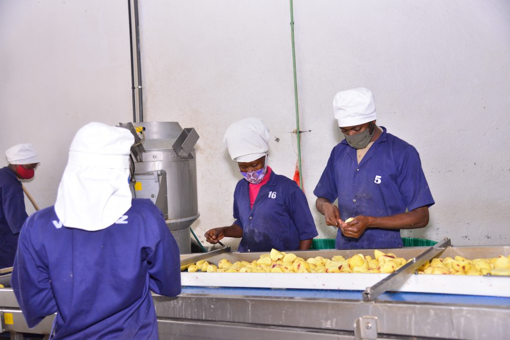 Food Safety Africa