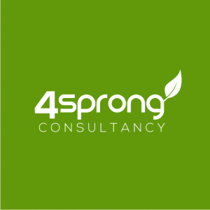 4Sprong Consultancy